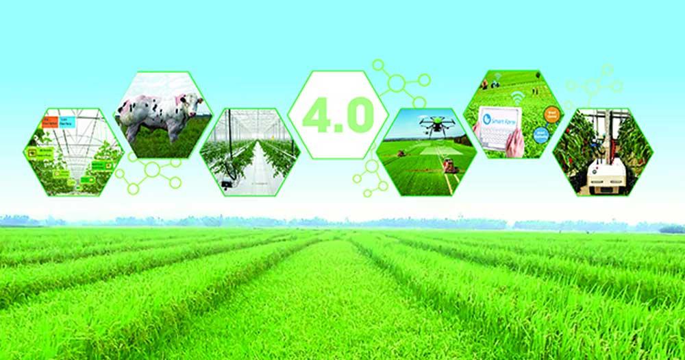 Vì sao người nông dân cần tiếp cận Internet?